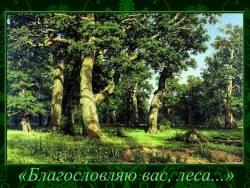 «Благословляю вас, леса...»